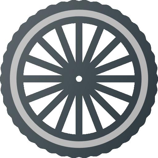 ruota bici